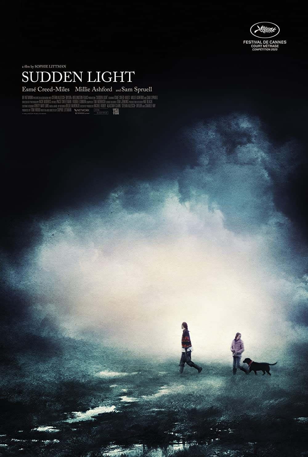 Sudden Light film poster