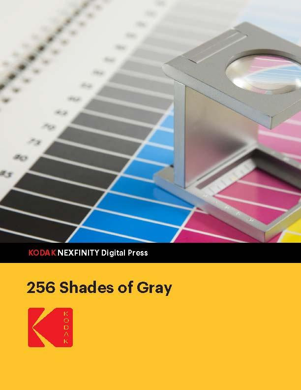 256 Shades of Gray white paper cover