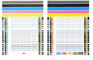 dsmobile 600 calibration sheet pdf